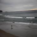 Surfer at St. Clair Beach, Dunedin