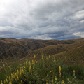 Otago Highlands