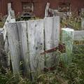 Gate, Quailburn Woolshed