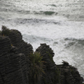 Pancake Rocks, Plants and Waves
